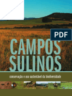 CamposSulinos.pdf