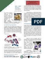 AIG Seleccion Genomica