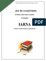 Caiet_de_creativitate.docx