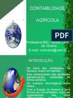 contabilidade_agricola (1).ppt