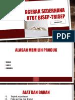 Alat penggerak sederhana otot bisep-trisep.pptx