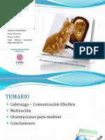 presentacintallerenliderazgoefectivoymotivacin-120707230847-phpapp01