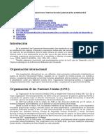 principales-organizaciones-internacionales-plenamente-establecidas.doc