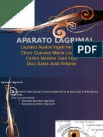 aparatolagrimalylagrima-111001151402-phpapp02.pptx