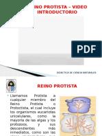 reinoprotista-120119171328-phpapp01