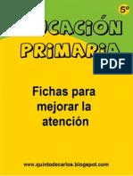 Atencion 5