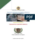 85613670-prediagnostico-ambiental.pdf