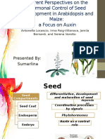 Sumarlina_Role of auxin review.pptx
