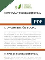 Estructura y Organización Social