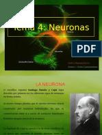 tema4-neuronas