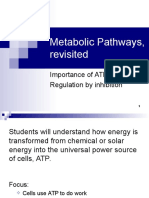 Lecture 20- ATP and Metabolic Pathways-2
