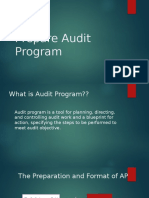 prepare audit program