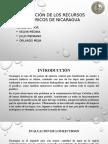 Situación de Los Recursos Hídricos de Nicaragua