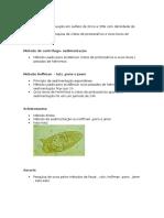 Modelo de prova prática de parasitologia clínica UNIP.docx
