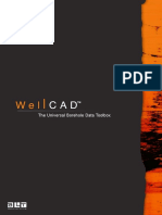 Wellcad Brochure