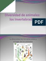 Animales (1)