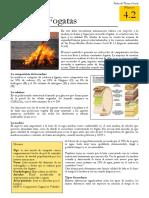 4.2_Tipos_de_Fogatas (1).pdf