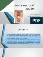 Sindrome Escrotal Agudo.pptx