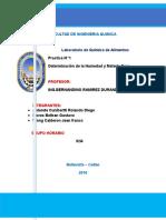 Informe Nº1 determinacion de la humedad terminado.docx