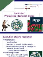 Prokaryotic Gene Regulation (2)