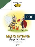 Rime_cu_antenute_planse.pdf