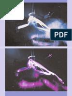 Speciation, Transvergence, Allogenesis