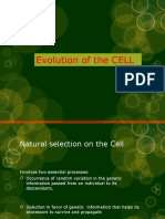 Unit 1A Evolution of the CELL