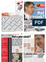 Magyar Vizsla újság 1.