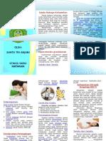 Leaflet Kehamilan Tm 1
