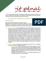 Droit-pénal complet.pdf