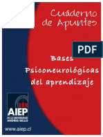 Bases Psiconeurológicas Del Aprendizaje
