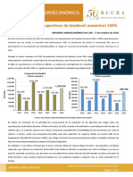 Informe sobre biodiesel