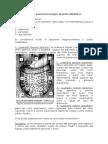 Clinica gastroenterología