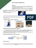 GUIA_10__REACCIONES_QUIMICAS 7.doc