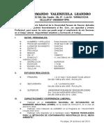 Currículum Vitae