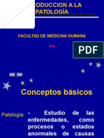 introducción a la patología