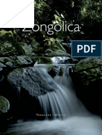 La Sierra de ZONGOLICA, Ver. ITSZ