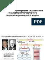PCR, RT-PCR, QPCR, Sekvenciranje