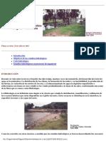 Hidrologia_Basica.pdf