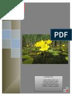 Informe Final Vegetacion de Agua Dulce