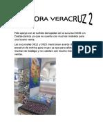 Bitacora Veracruz 2