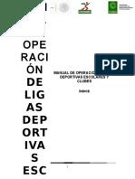 Manual de Organización de Clubes y Ligas Deportivas