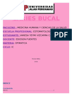Caries Bucal Vane