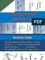 6 chromosomal mutations