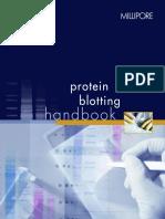 Protein Blotting Book MILLIPORE
