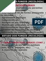 Fungos e Micoses