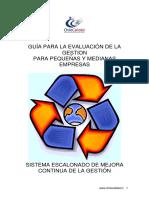 Guía de Evaluación SEMC VT