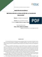 METODOLOGIA DE LA EVALUACION