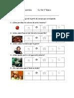 483982_15_NjWB00D8_losorganosdelossentidos.pdf