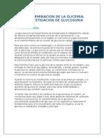 Bioquimica- Glicemia III